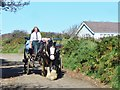 WV4674 : Sark - Horse Carriage by Colin Smith