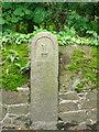 WV6648 : Old Milestone, A6, Bagatelle Road (Ancien jalon) by Alan Roseveer